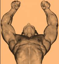 C:\Users\Dennis\Documents\Misc Bodybuilding Graphic and Photo Scans A-R\Freddy Ortiz - Overhead Pose.jpg